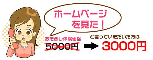 「ホームページを見た!」で3000円に